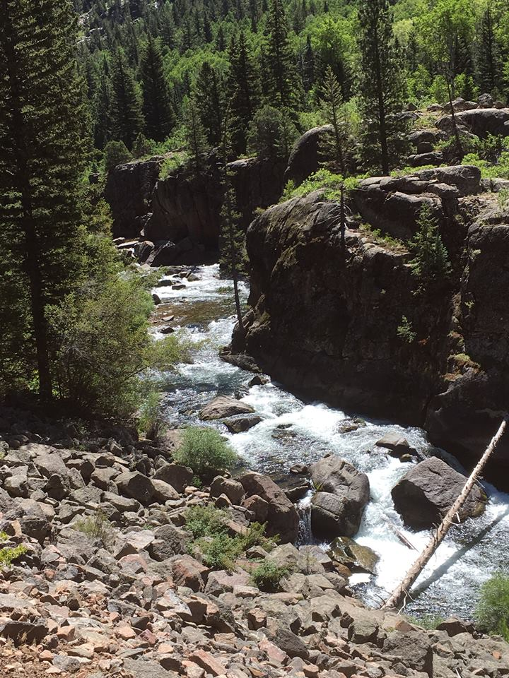streamfishing